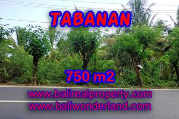 TANAH DIJUAL DI TABANAN RP 1.450.000 / M2 – TJTB138