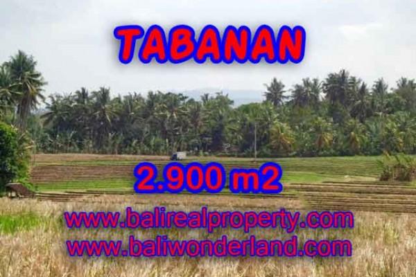 Murah ! Tanah di TABANAN Bali Dijual Rp 470.000 / m2 – TJTB136
