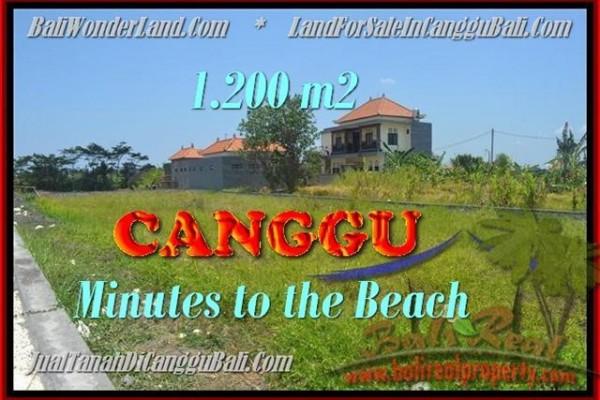 INVESTASI PROPERTI, TANAH MURAH DIJUAL di CANGGU BALI TJCG166