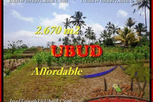 TANAH JUAL MURAH  UBUD BALI 2670 m2  View kebun dan sungai kecil