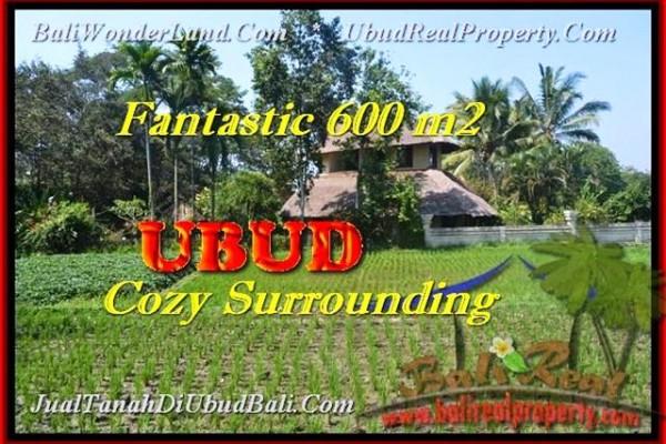JUAL MURAH TANAH di UBUD 600 m2 di Ubud Pejeng