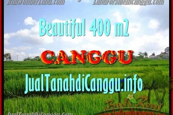 TANAH di CANGGU DIJUAL MURAH Untuk INVESTASI TJCG156
