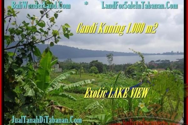 JUAL MURAH TANAH di TABANAN Untuk INVESTASI TJTB179