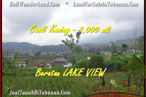 TANAH di TABANAN JUAL 10 Are View Danau Beratan dan Gunung