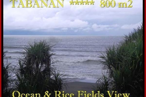 TANAH JUAL MURAH  TABANAN BALI 800 m2  View laut, sawah dan gunung
