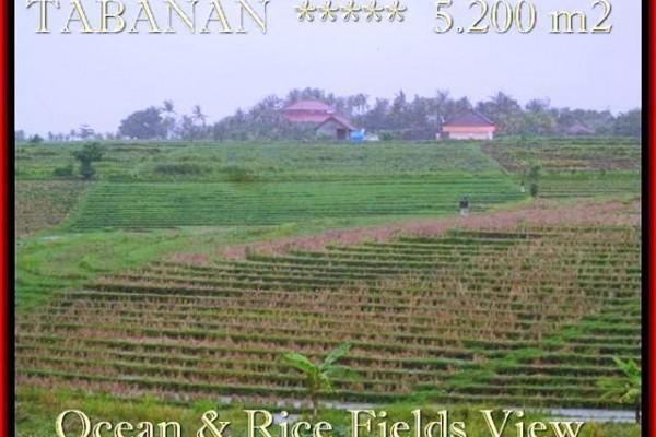 TANAH JUAL MURAH  TABANAN BALI 52 Are View laut, sawah dan gunung