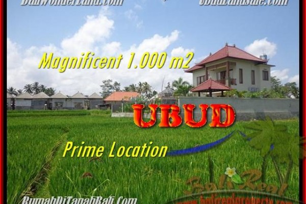TANAH DIJUAL di UBUD 10 Are di Sentral Ubud