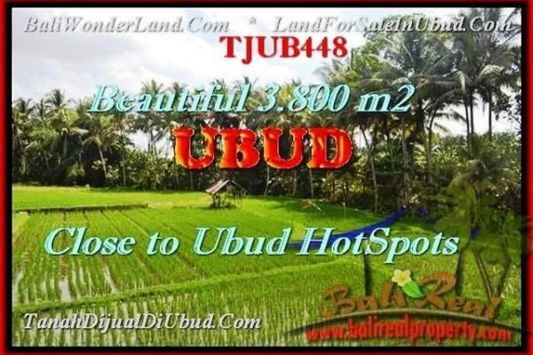 JUAL TANAH di UBUD 3.800 m2 di Sentral Ubud