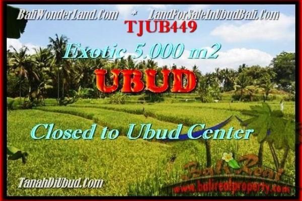 TANAH DIJUAL di UBUD BALI Untuk INVESTASI TJUB449