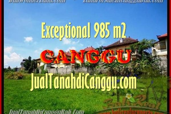 TANAH MURAH  di CANGGU BALI DIJUAL 9,85 Are view sungai di lingkungan villa