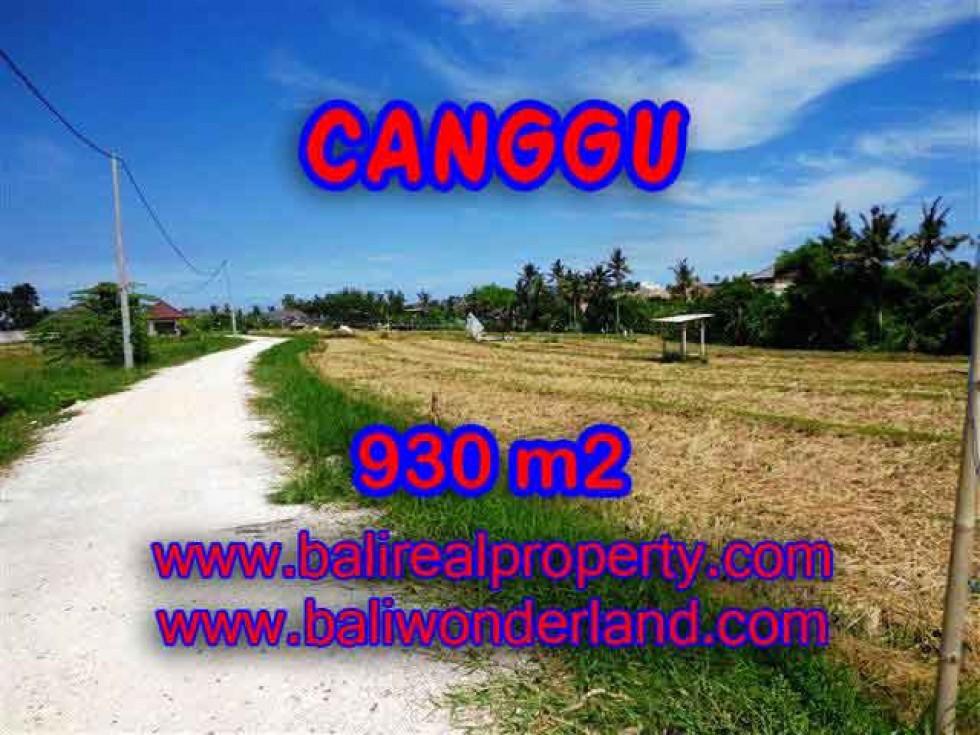 JUAL TANAH di CANGGU BALI 930 m2  View laut dan sawah