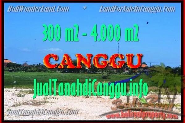 TANAH di CANGGU DIJUAL MURAH 300 m2 di Canggu Batu bolong