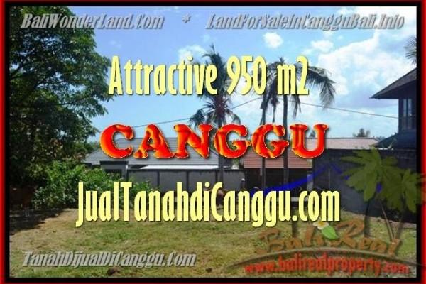 TANAH MURAH di CANGGU BALI DIJUAL 4,5 Are di Canggu Pererenan