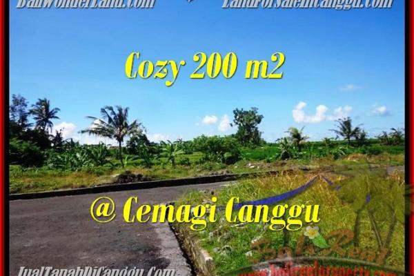 DIJUAL MURAH TANAH di CANGGU BALI Untuk INVESTASI TJCG171