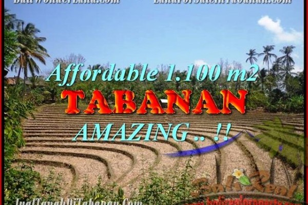DIJUAL TANAH di TABANAN BALI 11 Are di Tabanan Selemadeg