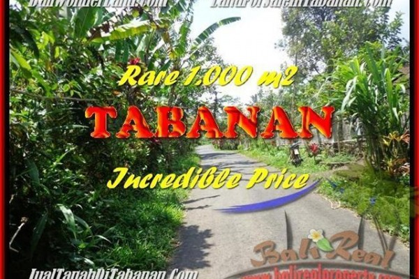 JUAL MURAH TANAH di TABANAN 1.000 m2 di Tabanan Pupuan
