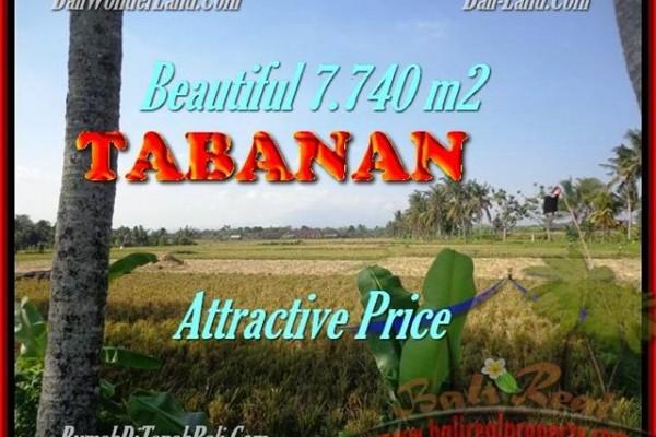 TANAH DIJUAL MURAH di TABANAN BALI Untuk INVESTASI TJTB173