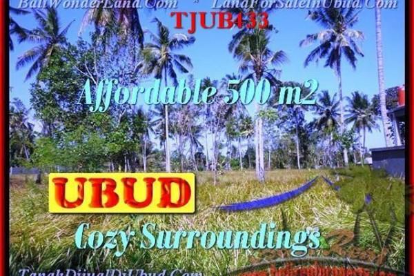 JUAL MURAH TANAH di UBUD 5 Are View kebun