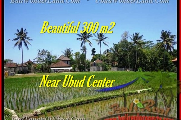 TANAH di UBUD BALI DIJUAL 3 Are View sawah link villa