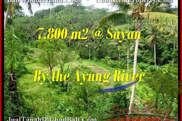 JUAL MURAH TANAH di UBUD BALI Untuk INVESTASI TJUB472