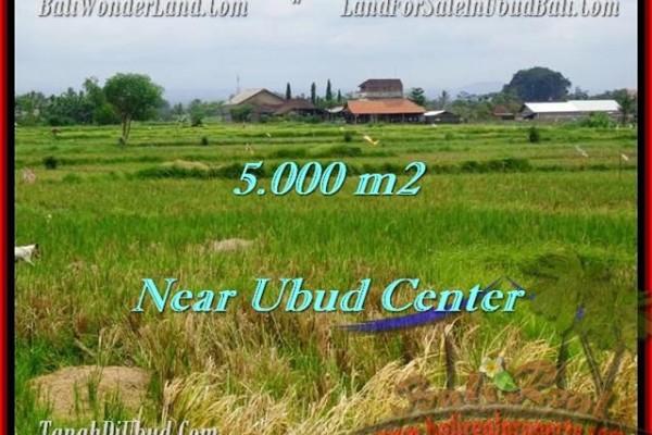 TANAH DIJUAL di UBUD 50 Are di Dekat sentral Ubud