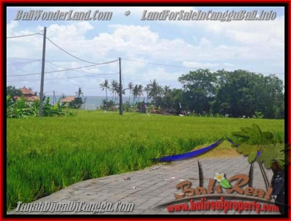 JUAL MURAH TANAH di CANGGU BALI 560 m2  view laut, sawah dan gunung