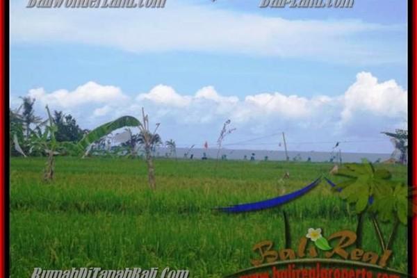 JUAL MURAH TANAH di CANGGU BALI 2.000 m2  view sawah dekat pantai