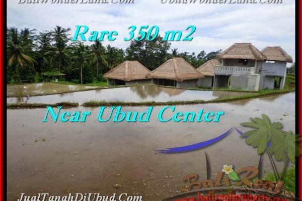 TANAH DIJUAL di UBUD Untuk INVESTASI TJUB476