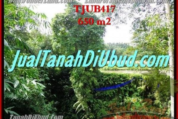 JUAL MURAH TANAH di UBUD 650 m2  View sawah dan pangkung