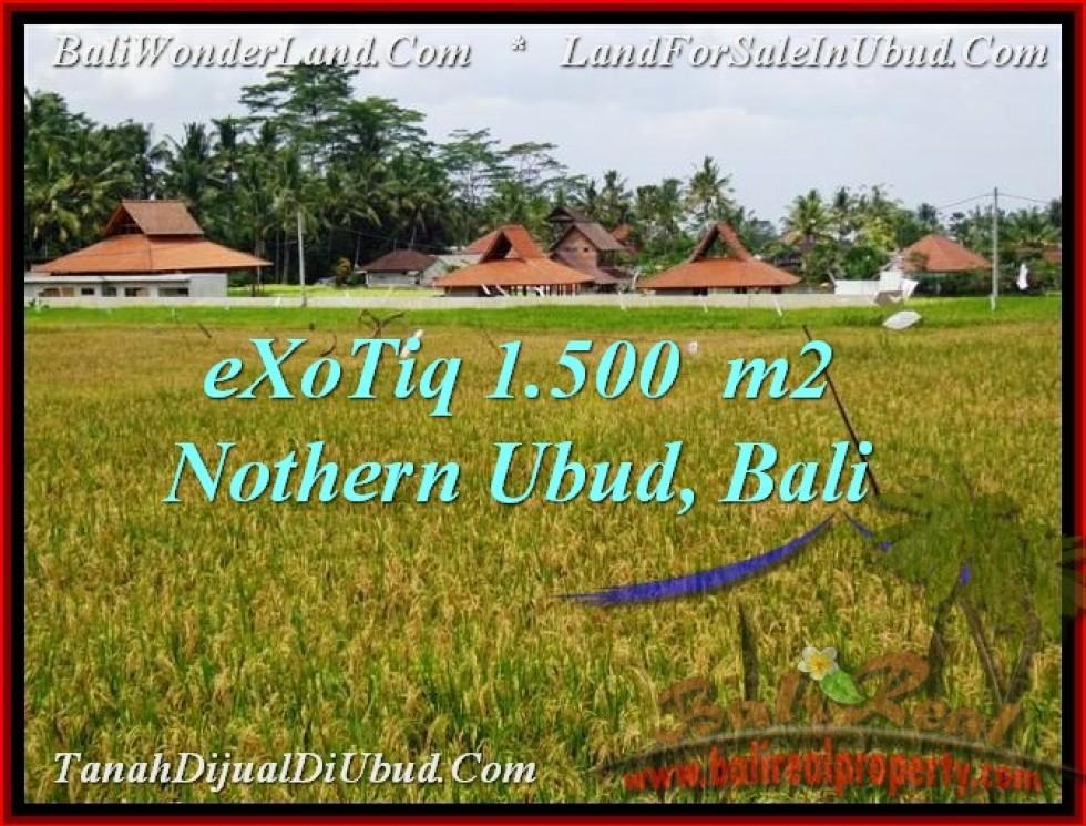 TANAH MURAH di UBUD BALI 1,500 m2  View sawah dan sungai kecil
