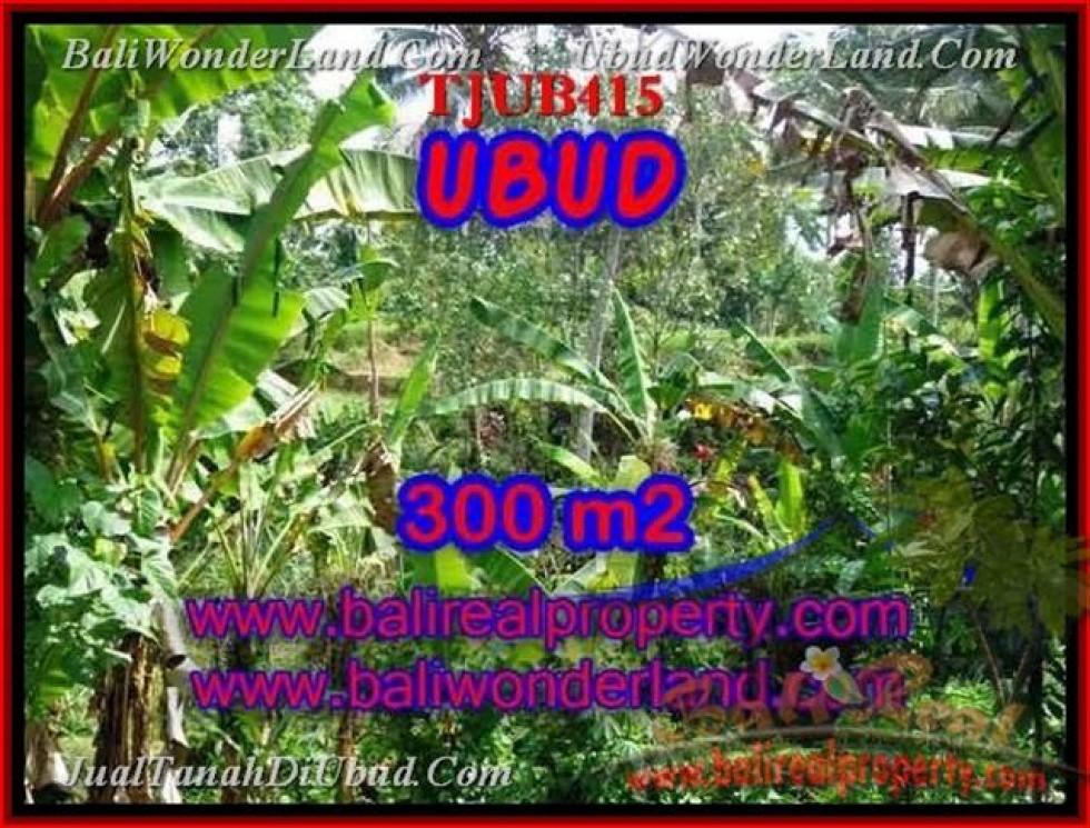 DIJUAL TANAH MURAH di UBUD 300 m2 di Sentral Ubud