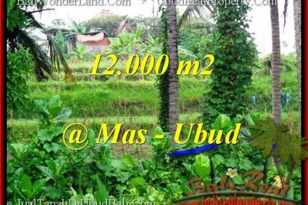 TANAH DIJUAL MURAH di UBUD BALI 12,000 m2 di Sentral Ubud