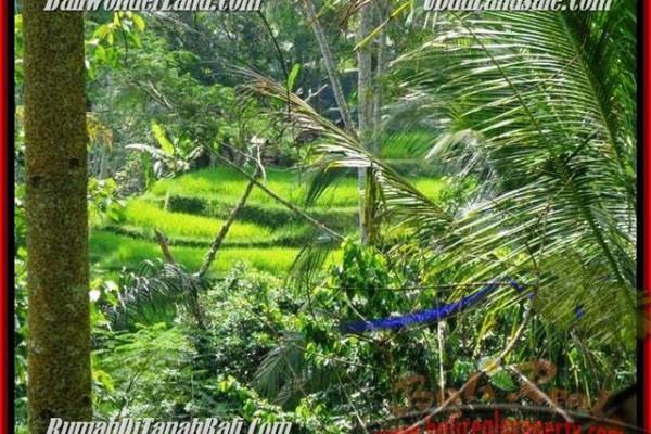 JUAL TANAH di UBUD BALI 725 m2  View Tebing,sawah dan sungai