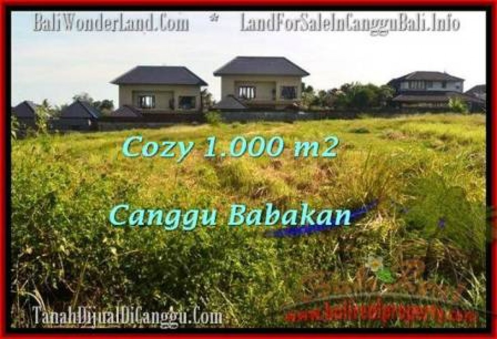 JUAL TANAH di CANGGU 10 Are View sawah link villa
