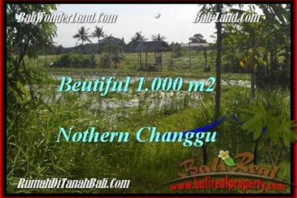 JUAL TANAH di CANGGU 10 Are View laut dan sawah link villa