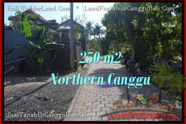 TANAH MURAH di CANGGU BALI DIJUAL Untuk INVESTASI TJCG182