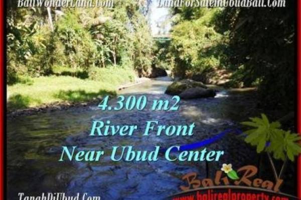 JUAL TANAH MURAH di UBUD BALI 43.15 Are View Sungai dan tebing