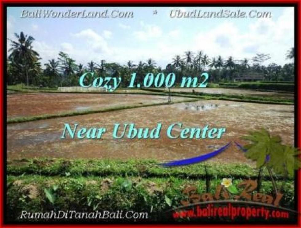 JUAL TANAH MURAH di UBUD BALI 1,000 m2  View Sawah dan sungai kecil link Villa