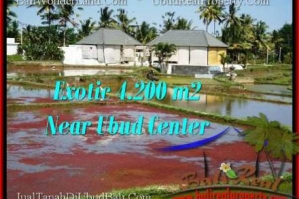 TANAH DIJUAL MURAH di UBUD 42 Are di Sentral Ubud