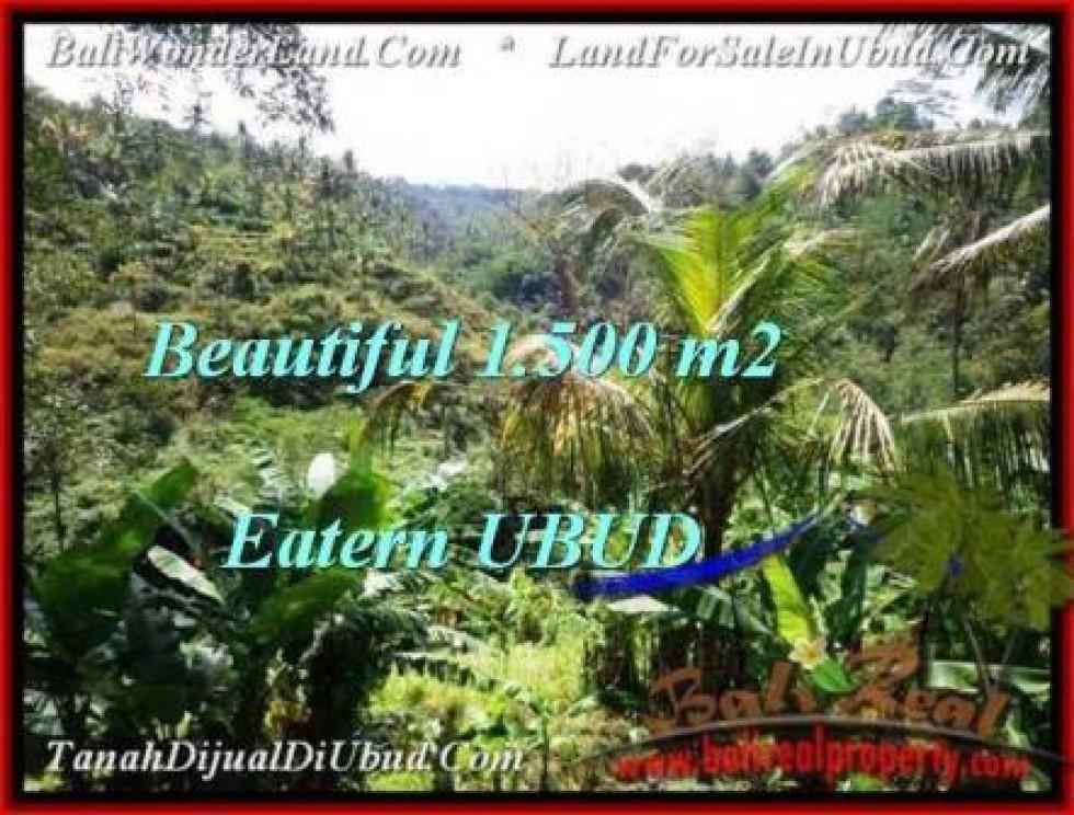 TANAH di UBUD BALI DIJUAL MURAH 15 Are View Tebing dan sungai besar