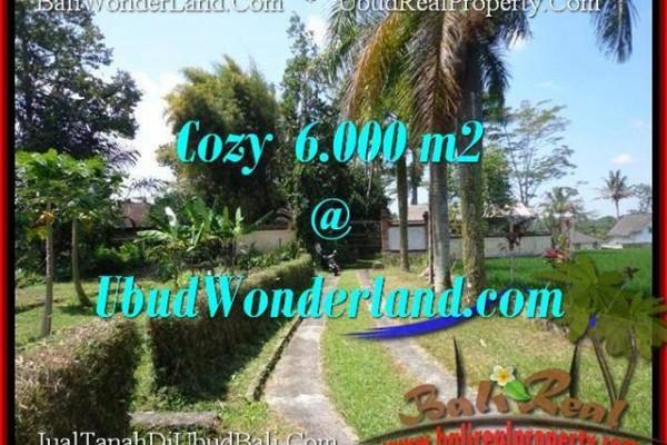 TANAH JUAL MURAH  UBUD 60 Are View  Sawah link Villa