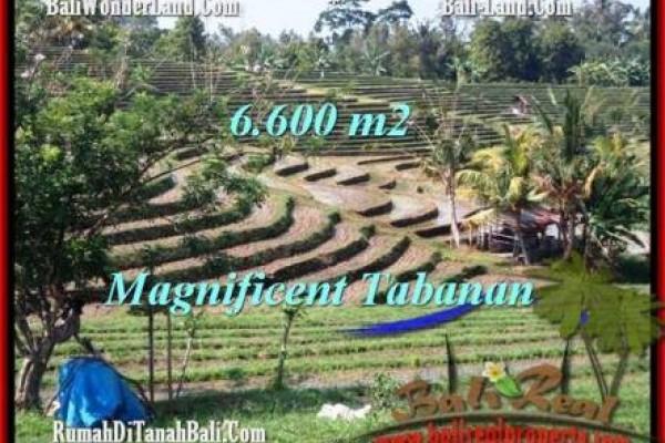 JUAL TANAH MURAH di TABANAN BALI 66 Are View Gunung sawah dan laut