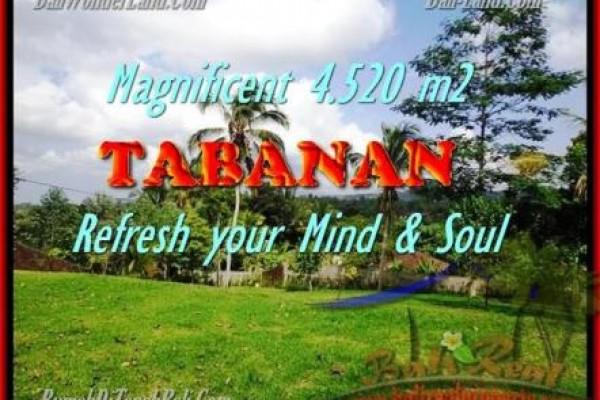 TANAH MURAH di TABANAN BALI TJTB154