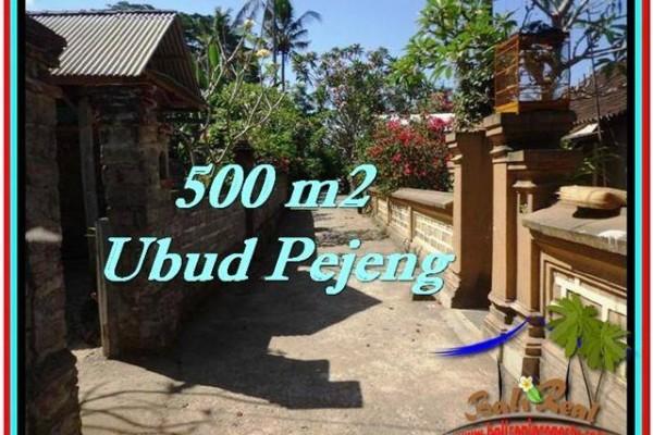 TANAH di UBUD BALI DIJUAL MURAH 5 Are View Kebun link Villa