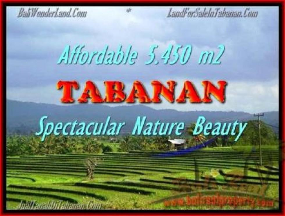 JUAL TANAH di TABANAN 54,5 Are View sawah gunung dan laut
