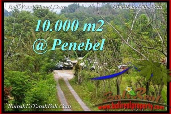 JUAL TANAH MURAH di  TABANAN 100 Are View Gunung, sawah jatiluwih