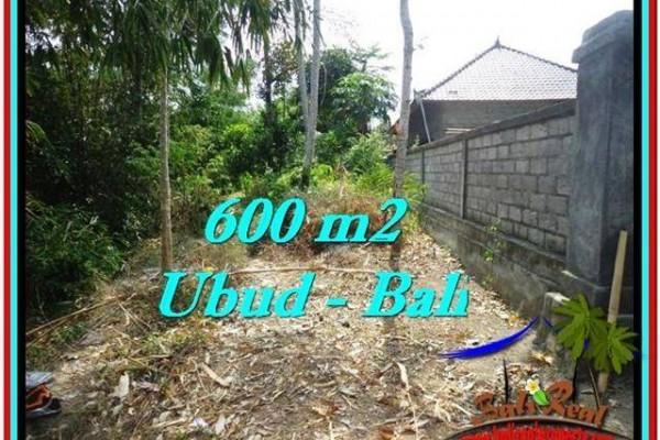 TANAH MURAH JUAL di UBUD BALI 6 Are View Kebun