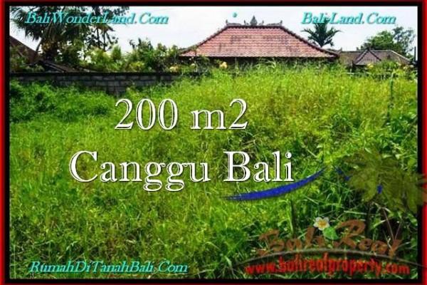 TANAH di CANGGU BALI DIJUAL MURAH 200 m2 di Canggu Pererenan