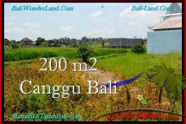 JUAL TANAH MURAH di CANGGU BALI 2 Are View sawah, lingkungan villa