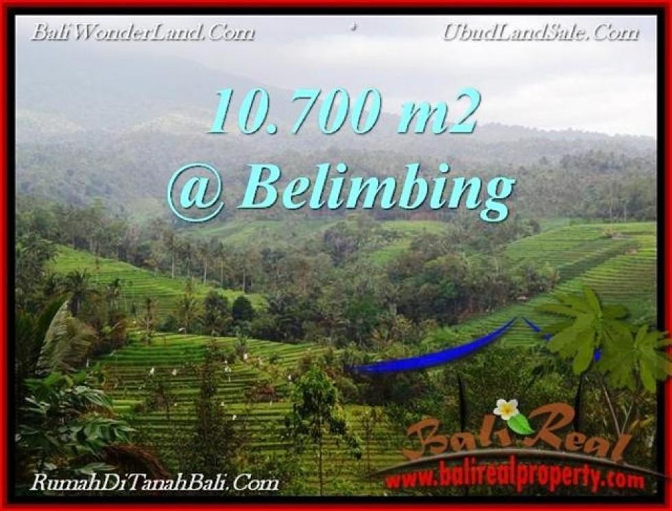 JUAL TANAH di TABANAN 10,700 m2  View Gunung, sawah